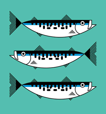 Fresh atlantic mackerel sea fish isolated, icon, graphic symbol, seafood packaging concept, hand hrawn vector illustration on color background Vecteurs