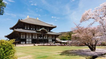 Todaiji Tempio di stagione sakura.