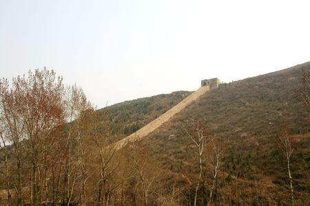 Bothriochloa Tongkuangyu the original ecological Great Wall Stock Photo - 4320792
