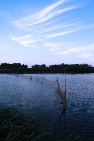 evening fishing photo