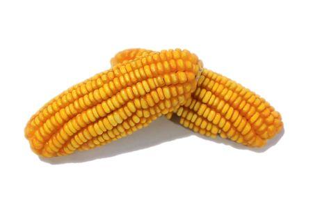 corn yellow: ma�z amarillo de naturaleza aislada sobre fondo blanco  Foto de archivo