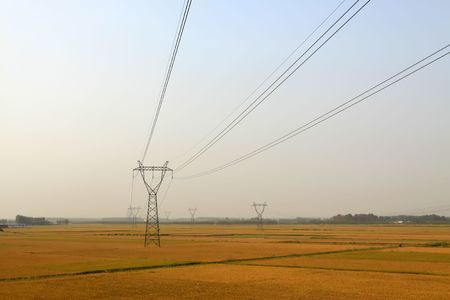 tower of power in the rice farmland, HeBei, North China. Stock Photo - 7207192