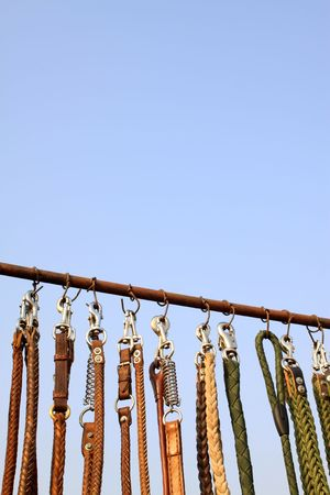 chains for dogs in the blue sky background Stock Photo - 7213521