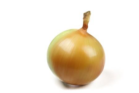 close up of onion on white background photo