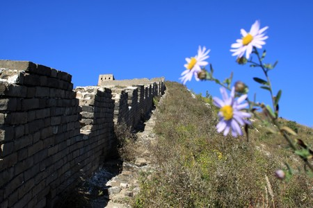the original ecology of the great wall pass in north china Stock Photo - 8147296