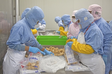 workers in food processing production line in a factory in north china Editorial