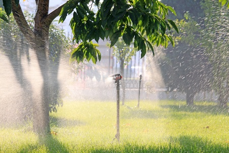 north china: spray irrigation in north china
