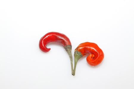 two red peppers in the white background Stock Photo - 11648684