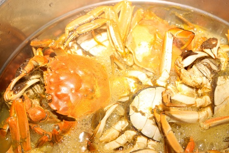 crab pot: delicious food, crab in the pot cooking