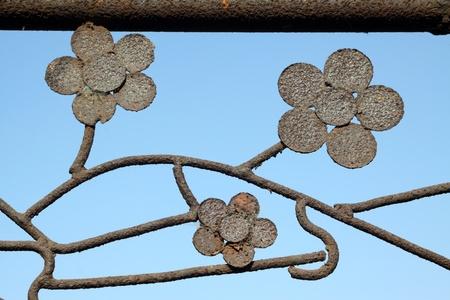 wrought iron flowers on the rust iron door Stock Photo - 11970610