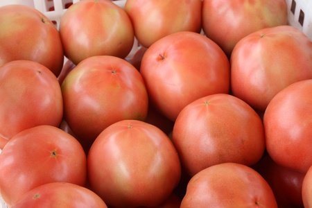 tomatoes piling up together in a market, north china photo