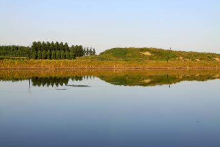 woodland by the canal in the wild, north china Stock Photo - 17601737