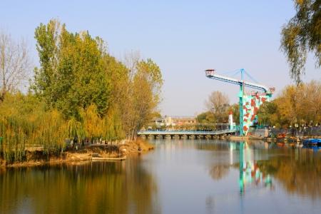 bungee jumping: puenting y los �rboles en un parque, norte de china Editorial