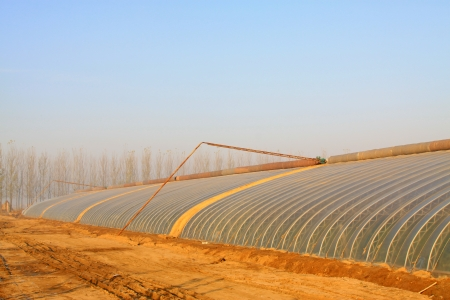 protection of arable land: vegetable greenhouse in rural areas, north china Stock Photo