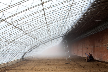 feature films: vegetable greenhouse interior landscape in rural areas, north china Editorial
