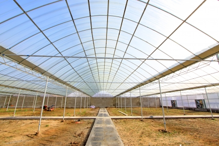 uncultivated: vegetable greenhouse internal structure, Uncultivated land, north china