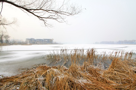 Frozen natural landscape at the side of the river, in winter, China Stock Photo