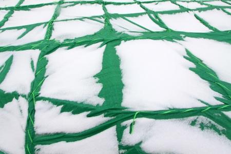 tarpaulin: snow on plant overwintering tarpaulin, in winter, China