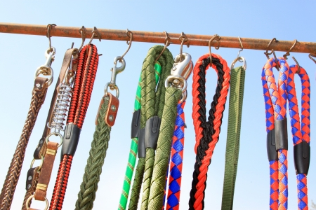 pet dog collar leash in a pet tool market, China Stock Photo - 21299479