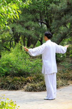 TANGSHAN - MAY 10: elderly practicing martial arts in a park on May 10, 2014, tangshan city, hebei province, China.  Stock Photo - 28690347