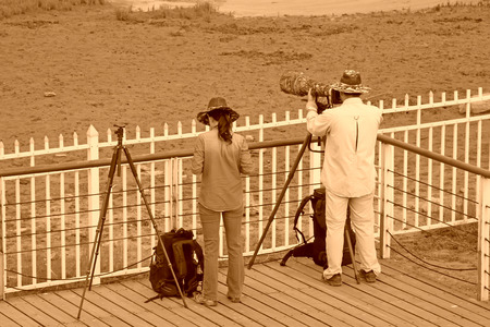 protectorate: QINHUANGDAO CITY- JUNE 1: A man and a woman two photographers were photographing in a wetland park, June 1, 2014, Qinghuangdao city, Hebei Province, China