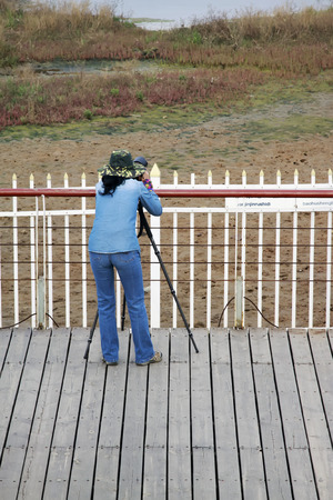 protectorate: QINHUANGDAO CITY- JUNE 1: A female photographer was photographing in a wetland park, June 1, 2014, Qinghuangdao city, Hebei Province, China  Editorial