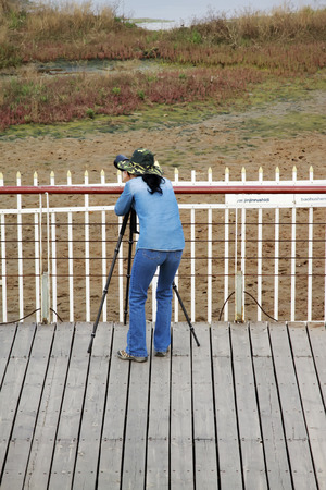 protectorate: QINHUANGDAO CITY- JUNE 1: A female photographer was photographing in a wetland park, June 1, 2014, Qinghuangdao city, Hebei Province, China  Stock Photo