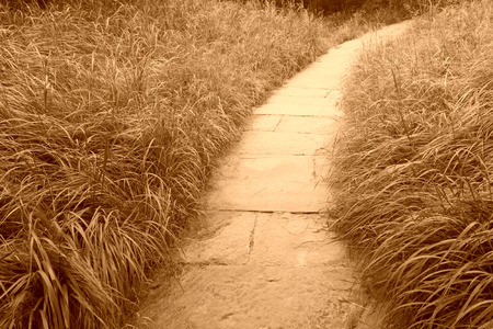 closeup of pictures, path and lawn in a park, China photo