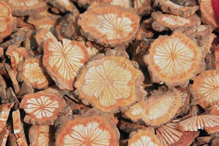 caulis: traditional Chinese flavor condiments, caulis spatholobi, closeup of photo Stock Photo