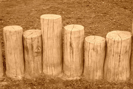 isolation: stump isolation belt by cement production in a park