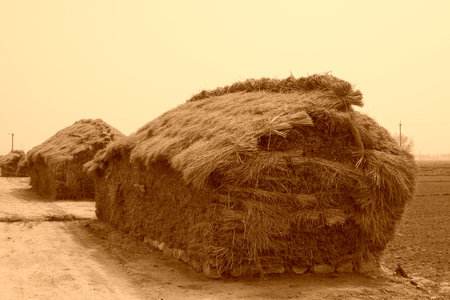 north china: piles of straw in winter north china