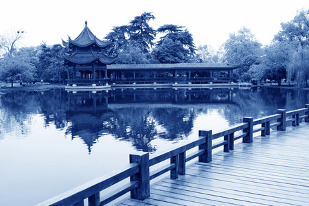 cycas: ancient Chinese traditional architectural landscape, south china