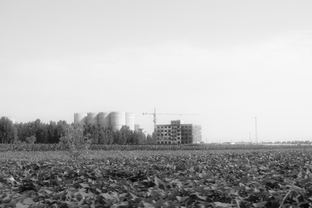 unfinished building: Farmland and unfinished building