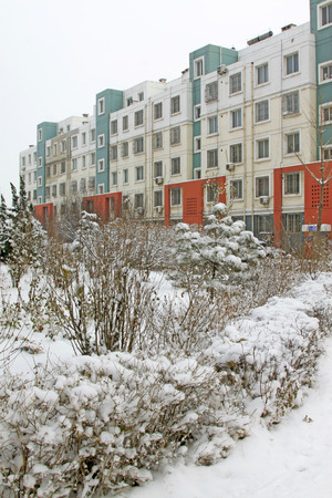 areas: Plants in the snow at residential areas