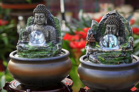 bodhisattva: Bodhisattva bonsai, closeup of photo