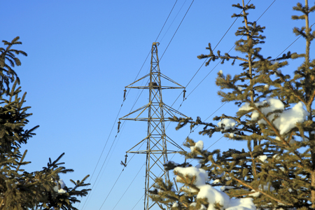 solid wire: Electric power tower and trees in the snow