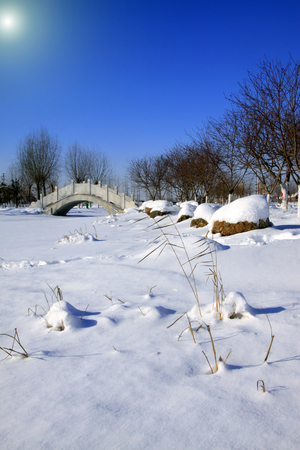 dazzle: bridge snow-covered landscape in a park, closeup of photo Stock Photo