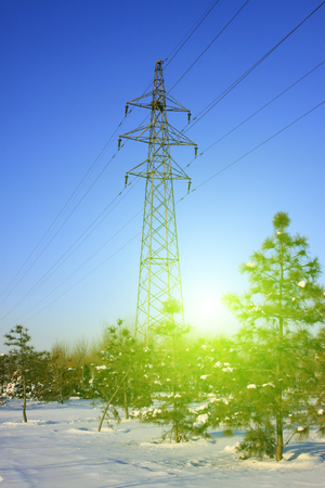 energia electrica: Electric power tower and trees in the snow
