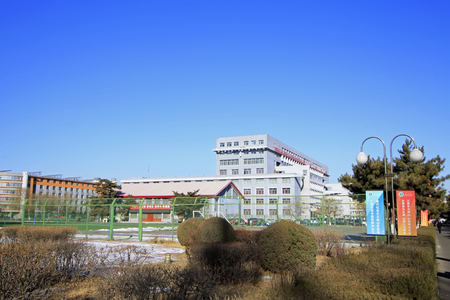 normal school: Hohhot City - February 5: Inner Mongolia normal university campus landscape, on February 5, 2015, Hohhot city, Inner Mongolia autonomous region, China