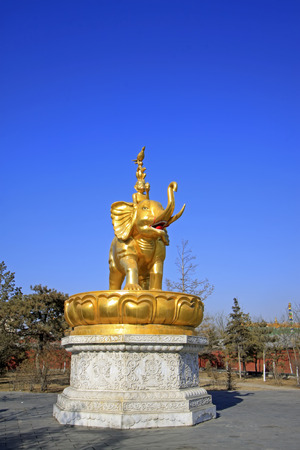 aureate: Harmony four sculpture in the Xilituzhao Lamasery