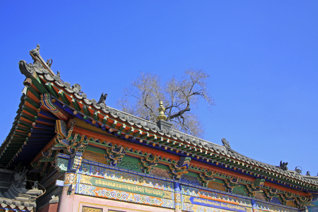 tantra: Gray roof in the Five Pagoda Temple, Hohhot city, Inner Mongolia autonomous region, China Stock Photo