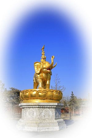 aureate: buddhist sculpture in the Xilituzhao Lamasery