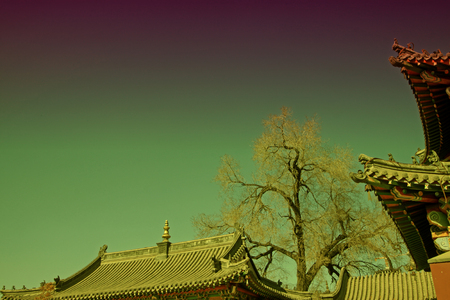 tantra: Gray roof in an ancient architectural temple  Stock Photo