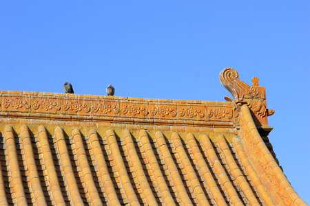 stay alert: pigeons on the roof of temple, closeup of photo Stock Photo