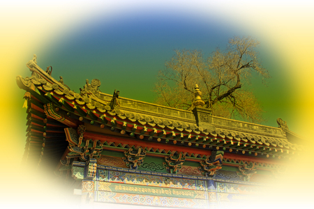 restore ancient ways: ridge and dead trees in a temple, closeup of photo