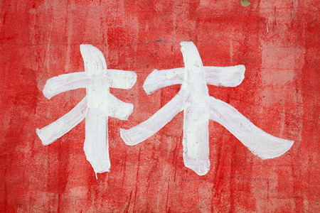amplitude: Chinese characters  forest  written on the wall, closeup of photo