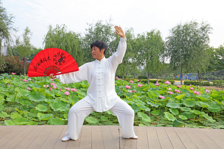 dress form: LUANNAN COUNTY - July 16: people practicing tai chi on July 16, 2016, Luannan county, Hebei Province, China Editorial