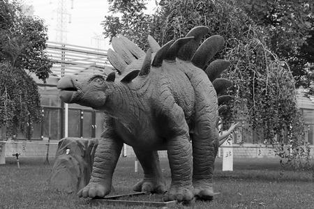 lifelike: BEIJING - OCTOBER 23: Dinosaur model in a park, on october 23, 2014, Beijing, China. Stock Photo