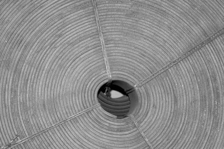 toughness: rolls of belt, closeup of photo Stock Photo