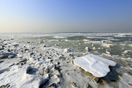 polar environment: Sea ice natural landscape
